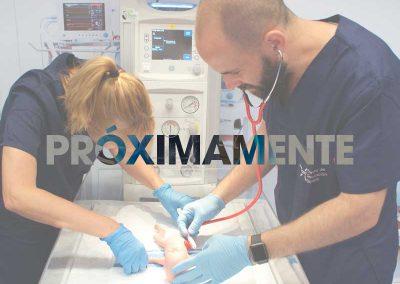 Emergencias obstétricas y reanimación neonatal