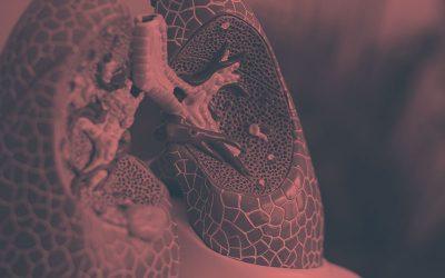 Fisioterapia, rehabilitación respiratoria y EPOC