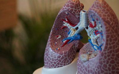 Experto en Fisioterapia Respiratoria: trabaja en lo que te apasiona